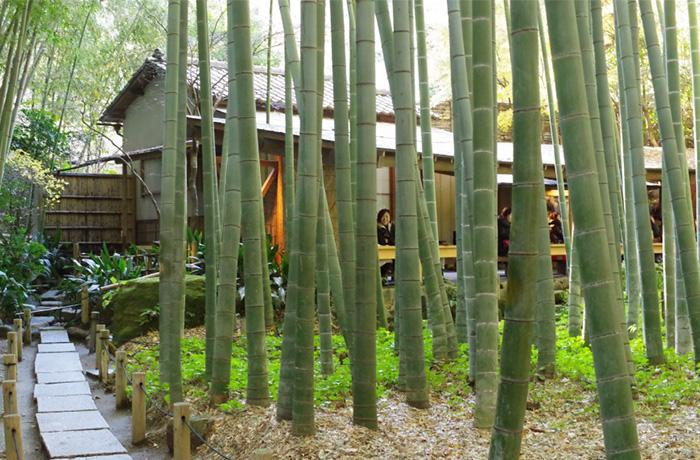 img_hokokuji-temple_02